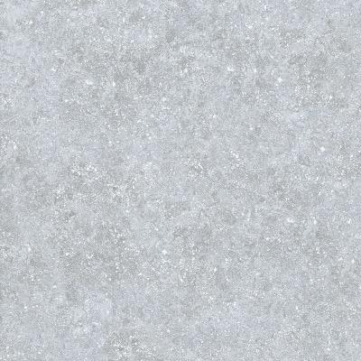 Carrelage ext rieur 2 cm de forte epaisseur aspect for Dalle exterieur 60x60